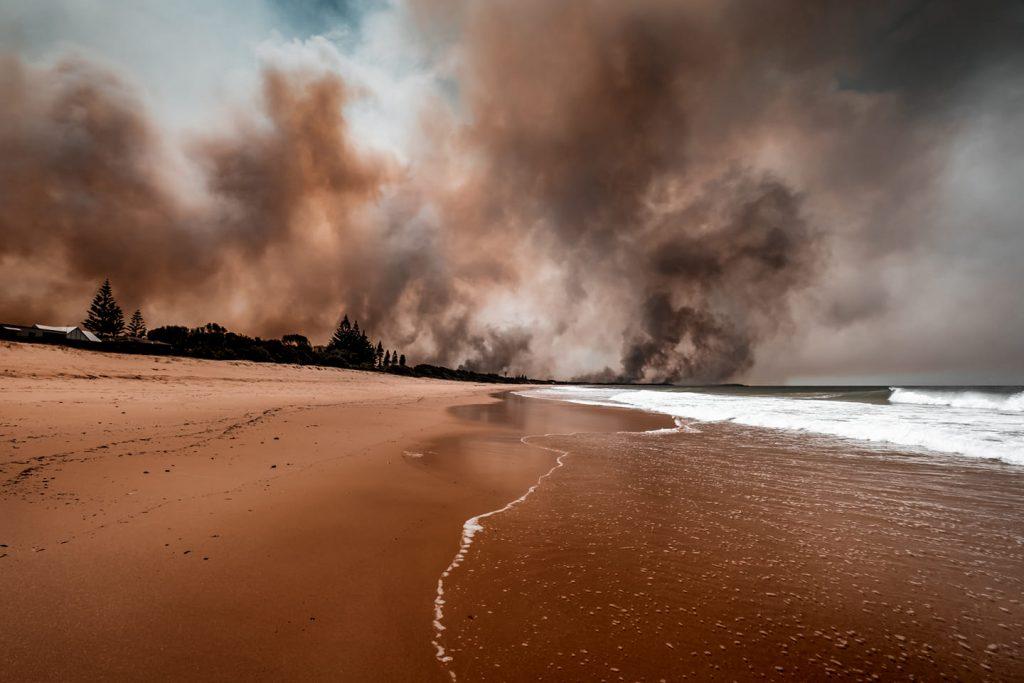 Bushfires part 2 2020