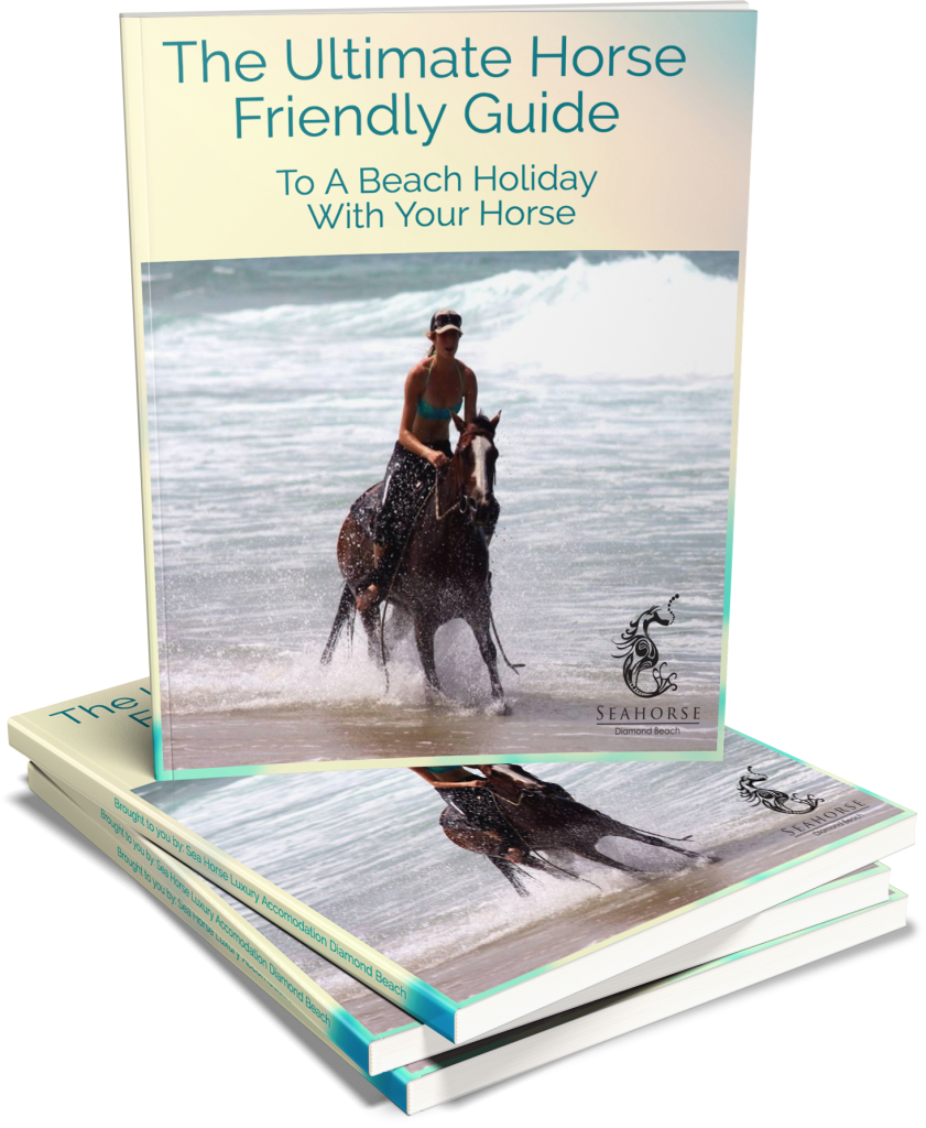 Holiday with your Horse