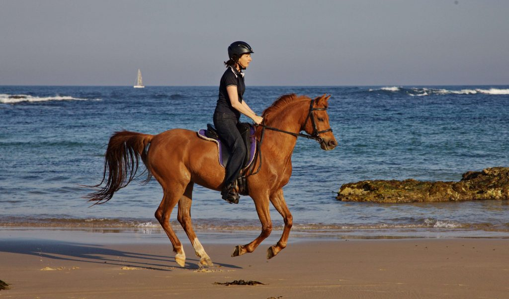 Horse-rider-cantering-on-beach